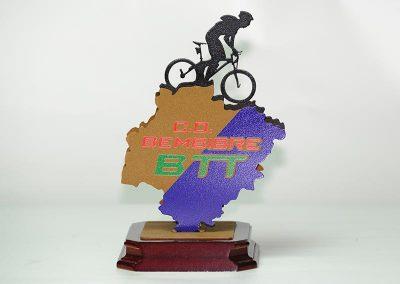 Trofeo-Nueva Imagen Publicidad Bierzo